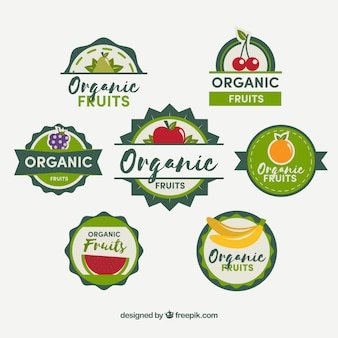 Set of flat stickers with organic fruits