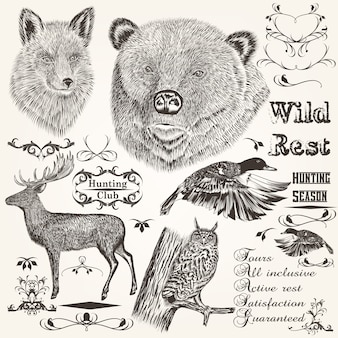 Set of forest animals illustrated and ornaments
