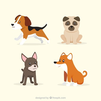 Set of four cute puppies in flat design