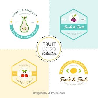 Set of four fruit logos in flat design