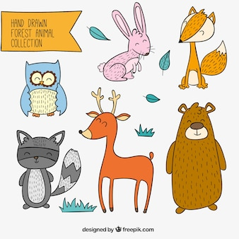 Set of hand drawn cheerful forest animals