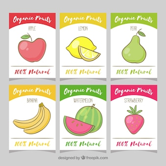 Set of hand drawn fruit cards