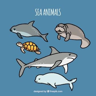 Set of hand-drawn sea animals