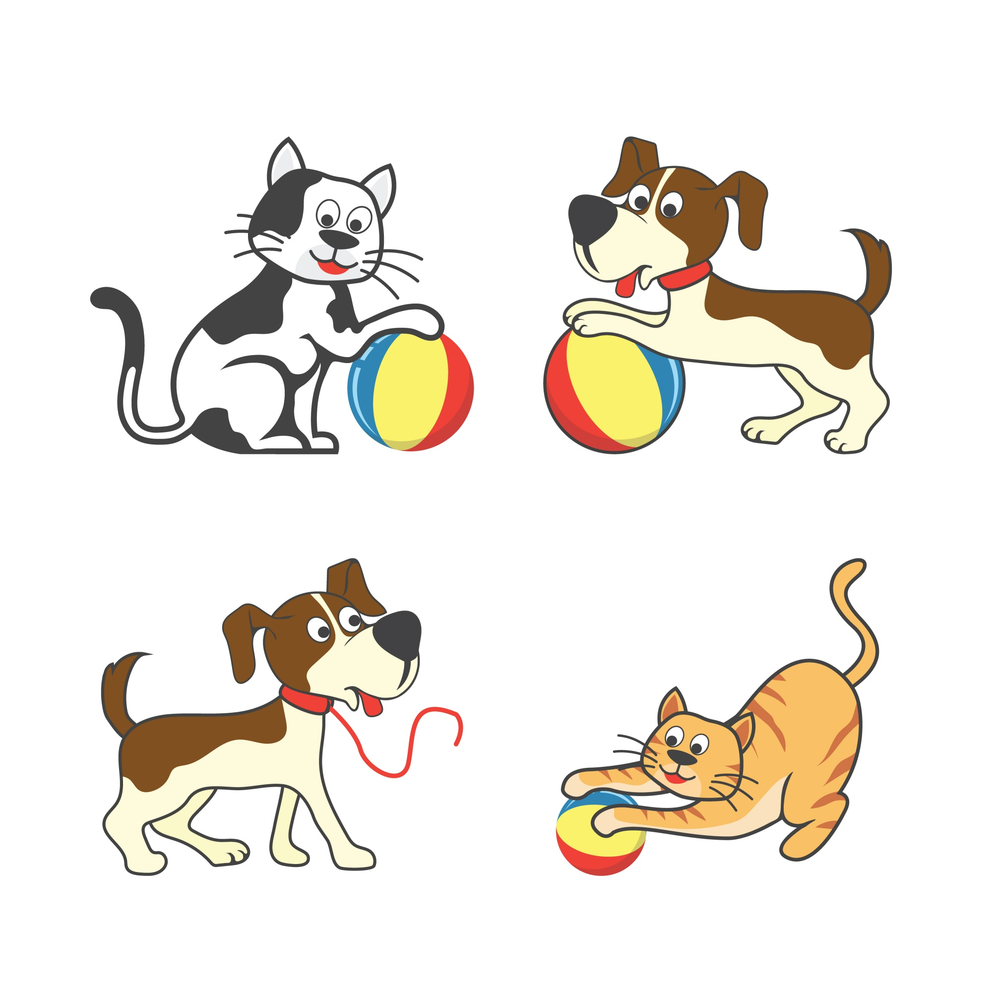 Set of happy pet playing a ball / pet toys accessories