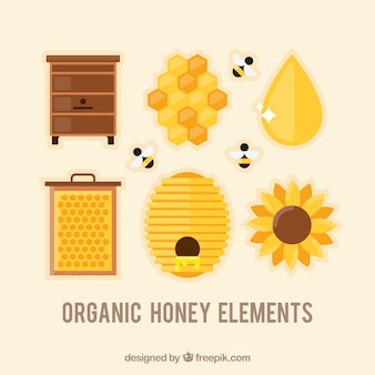 Set of honey elements in flat design