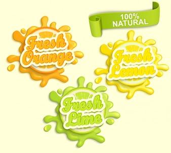 レモン、オレンジ、ライムジュエスのラベルのスプラッシュのセット。