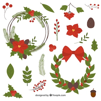 Set of natural elements of christmas decoration