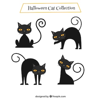 Set of nice black cats