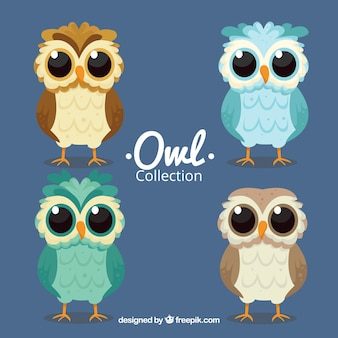 Set of owls with big eyes