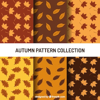 Set of patterns with different types of leaves