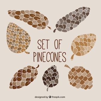 Set of pinecones