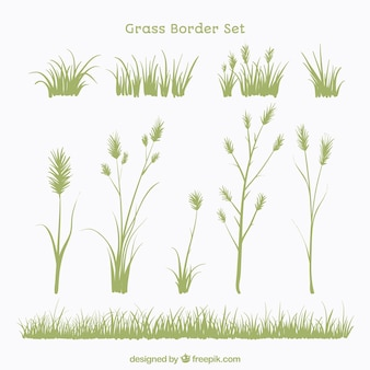 Set of plants and grass borders