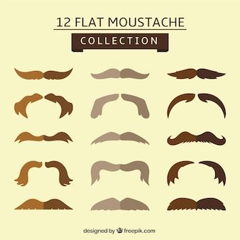 Set of stylish mustache in flat design