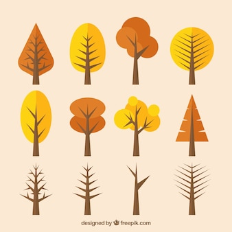 Set of trees in flat design with brown tones