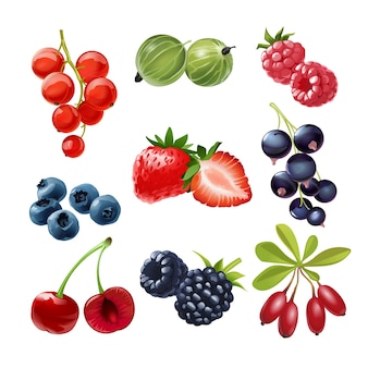 Set of vector icons  juicy ripe berries