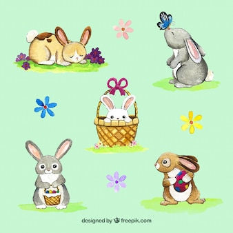 Set of watercolor bunnies and flowers