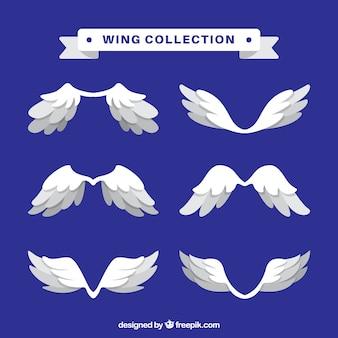 白い羽のセット