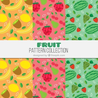 Several colored patterns with tasty fruits