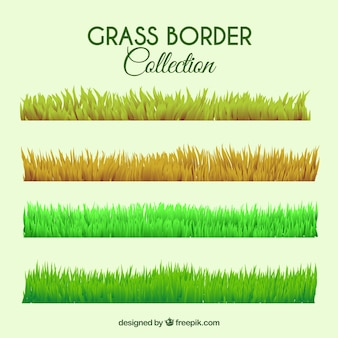 Several grass borders with different colors