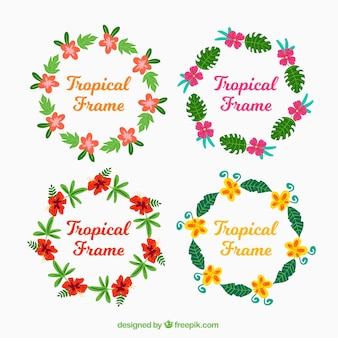 Several round frames with colorful flowers