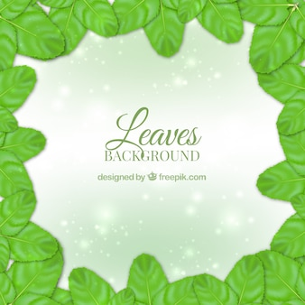 Shiny background with green realistic leaves