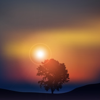 Silhouette of a tree against a sunset sky