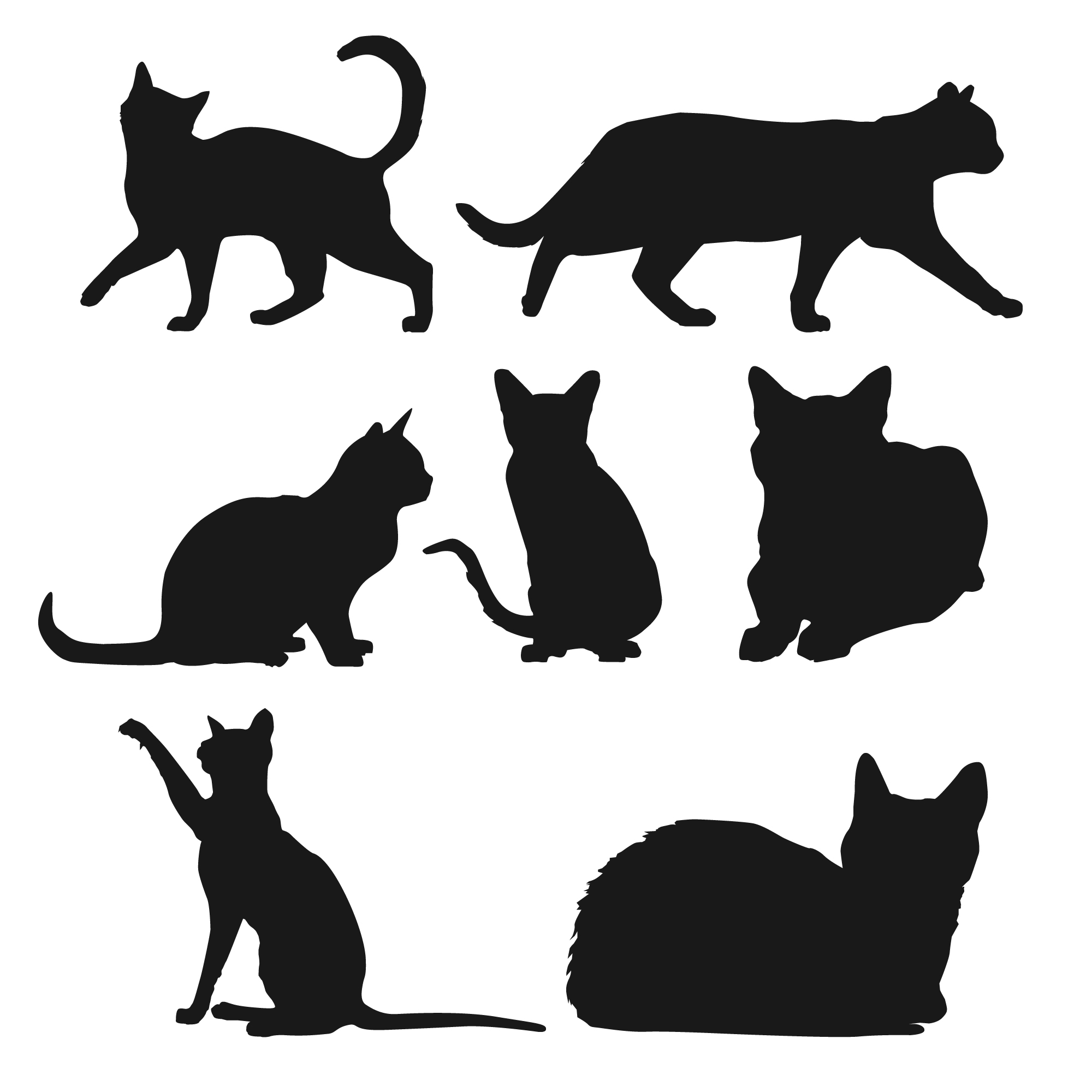Silhouette of cats in different positions