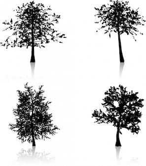 秋の木のシルエット