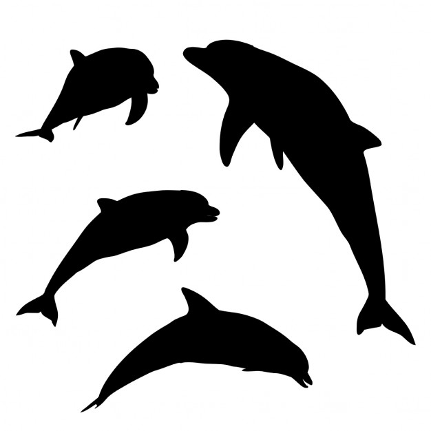 Silhouettes of dolphins in various poses