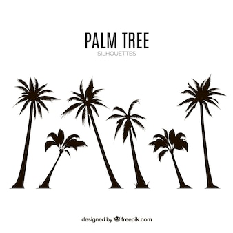 Silhouettes set of palm trees