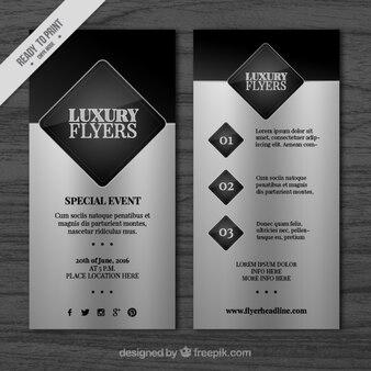 Silver elegant flyer