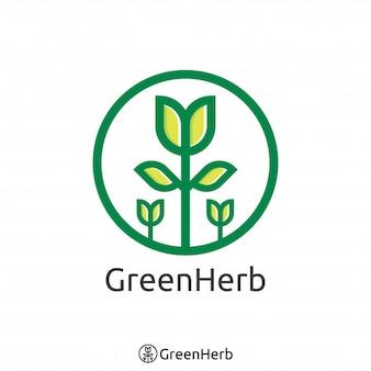 シンプルな緑の木のロゴ。有機ハーブのロゴコンセプト。ベクトルイラストレーション。