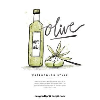 Sketch olive oil background