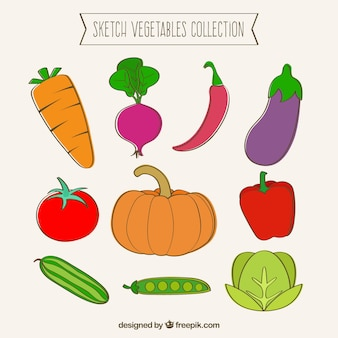 Sketch vegetables collection