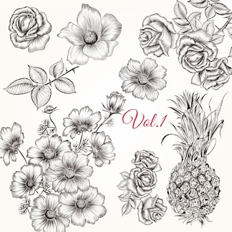 Sketched flowers collection