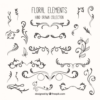 Sketches floral elements pack