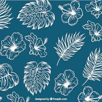 Sketches of palm leaves and flowers background