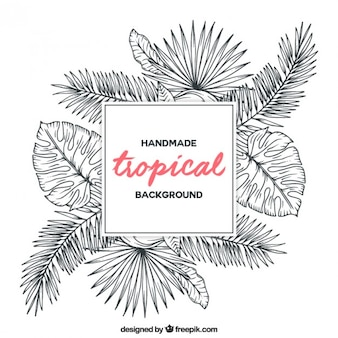 Sketches tropical plants background