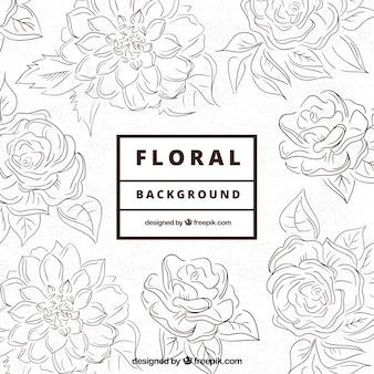 Sketchy floral background