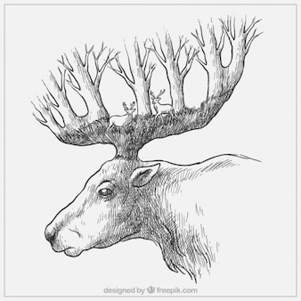 Sketchy maple with trees in the horns