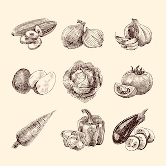 Sketchy vegetables collection
