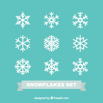 Snowflakes set in flat design