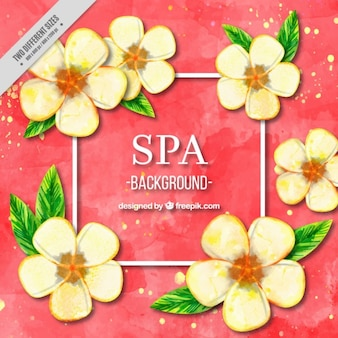 Spa flowers background