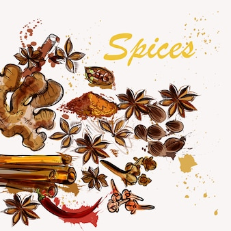 Spices background design