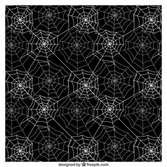 Spider web pattern in black and white colors
