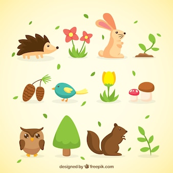 Spring Animals and Nature Collection