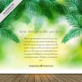 Spring background with palm leaves