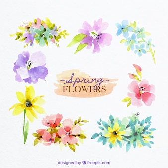 Spring flowers in watercolor style