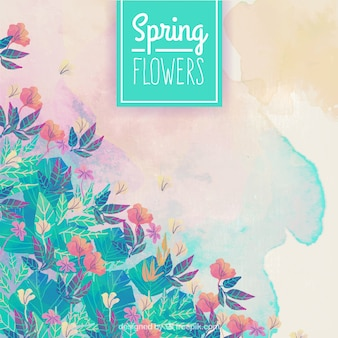 Spring flowers watercolor background