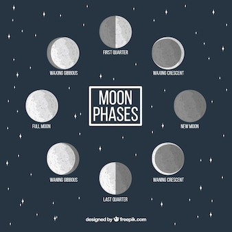 Starry background with decorative moon phases